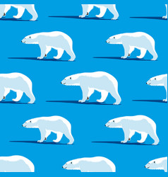 polar bears on a blue background vector image
