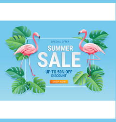summer sale card with two pink flamingo vector image