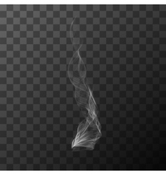 Realistic transparent white smoke object vector