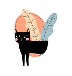 Black cat with pink cheeks cartoon vector