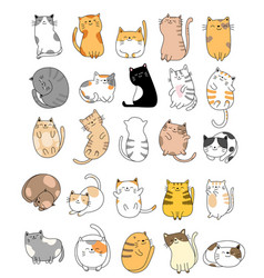 cute bacats cartoon hand drawn style vector image