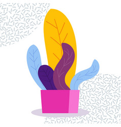 Exotic tropical indoor plant in a flowerpot on a vector