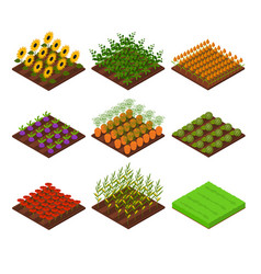 Farm set isometric view vector