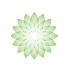 green lotus flower - symbol of yoga wellness vector image