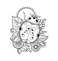 Ladybug coloring book vector image