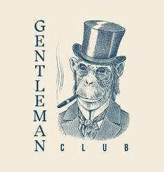 monkey gentleman with a cigar and in a hat vector image