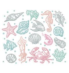 Seamless pattern sea animal vector
