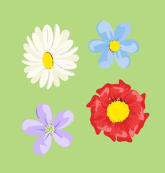 Set of colored flowers vector