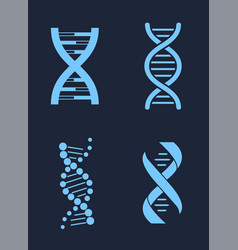 Set of dna icon chains genetic personal codes vector