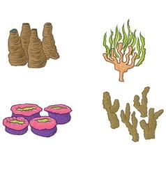 hand drawn coral design vector image