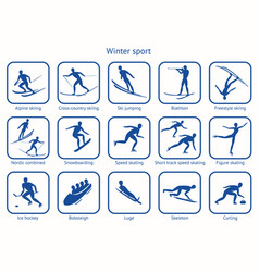 winter sport and game vector image