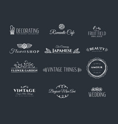 collection of vintage elements vector image