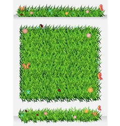 Green Grass Backgrounds vector image vector image