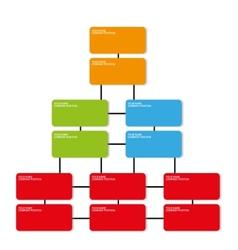 Company position organization template vector