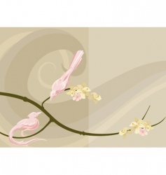 dove background vector image