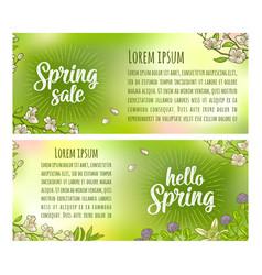 hello spring sale lettering sakura blossom vector image