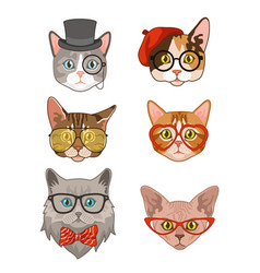 hipster cat funny cats avatar with hats vector image