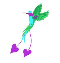 Hummingbird bird isolate on a white background vector