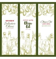 Olive oil sketch banner set for food theme design vector image