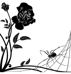 Rose and spider vector