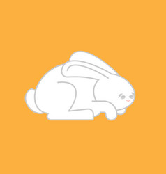 white rabbit isolated cute hare bunny animal vector image