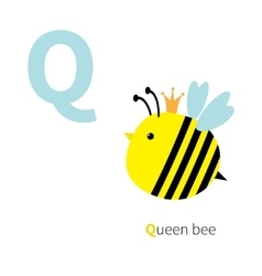 Letter Q Queen bee Zoo alphabet English abc with vector image vector image