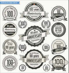 Anniversary retro badges collection 100 years vector