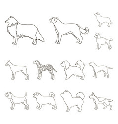 Dog breeds outline icons in set collection vector