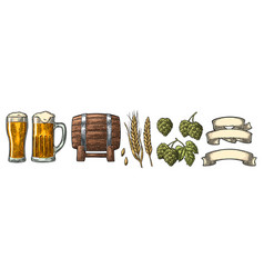 glass beer with ribbon barrel and hop branch vector image