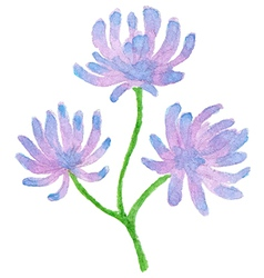 Hand drawn violet watercolor flowers vector image