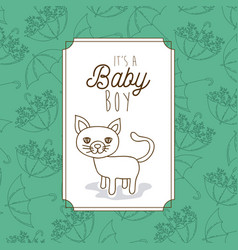 Its a baby boy frame with cat vector