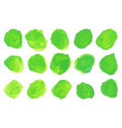 set of watercolor pastel green round brushes vector image