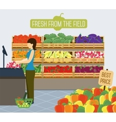 Supermarket shelves of vegetables vector image