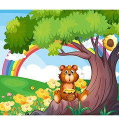 A bear under the tree with a rainbow at the back vector image