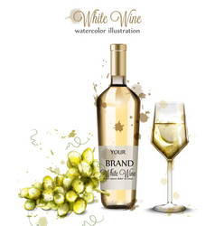 bottle of white wine and glass watercolor vector image
