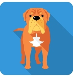 dog French Mastiff icon flat design vector image
