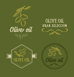 Olive oil design concept Great selection vector image