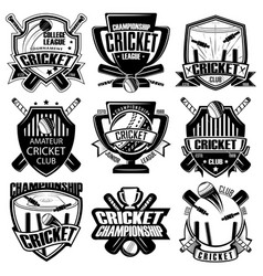 Set nine cricket badge vector