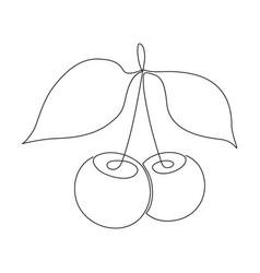 cherry one line image vector image