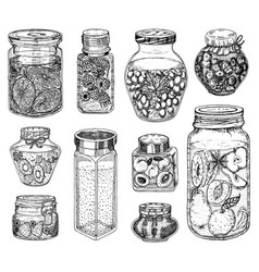 Glass jars with berry jam and fruit set vintage vector