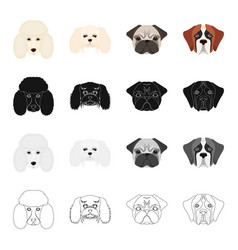 Poodle molthesis bulldog and other web icon in vector