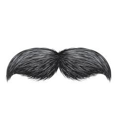 realistic vintage classic retro mustache isolated vector image