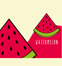watermelon fruit tropical fresh natural on colored vector image