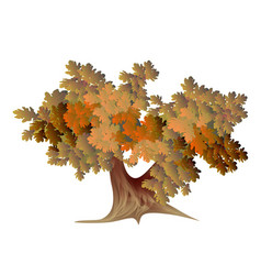 Abstract autumn oak vector