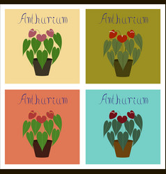 Assembly of flat plant anthurium vector