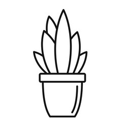 Modern succulent pot icon outline style vector