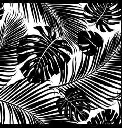 Seamless pattern palm tree leaves vector