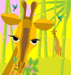 giraffe with branch vector image vector image