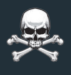pirates jawless skull and bones vector image vector image