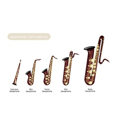 Different Kind of Musical Saxophone vector image vector image